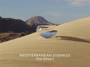 med the desert