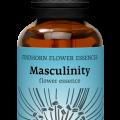 fh masculinitynew